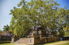 Anuradhapura Zdjęcie Royalty Free