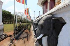 Anuradhapura, dagoba Ruvanvelisaya Στοκ φωτογραφίες με δικαίωμα ελεύθερης χρήσης