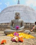 Anuradhapura, dagoba Ruvanvelisaya, Budha imagem de stock