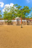 Anuradhapura Jaya Sri Maha Bodhi drzewa pole V Obrazy Royalty Free