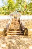 Anuradhapura Jaya Sri Maha Bodhi Drzewni Zachodni schodki Zdjęcia Stock