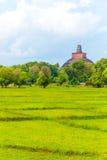 Anuradhapura Jetavanaramaya Stupa απόμακρο Β Στοκ εικόνες με δικαίωμα ελεύθερης χρήσης