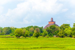 Anuradhapura Jetavanaramaya Stupa απόμακρο Χ Στοκ Φωτογραφίες