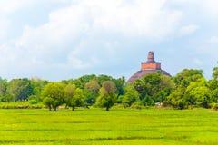 Anuradhapura Jetavanaramaya stupa Odległy H Zdjęcia Stock