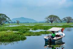 ANURADHAPURA, SRI LANKA - NOVEMBRE 2013 : Pêcheur sur le lac Tissa Photo stock