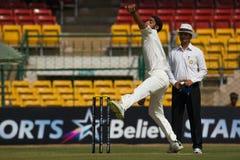 Anureet Singh Bowling Arkivbild
