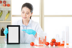 Använd den digitala minnestavlan för att finna informationen av gmo-mat Fotografering för Bildbyråer