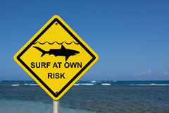 Använd varningen, när du surfar, därför att hajar är närvarande Arkivfoton
