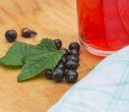 Användbar kompott av bär, svarta vinbär Fotografering för Bildbyråer