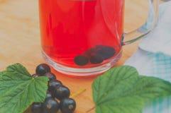 Användbart te från bär av den svarta vinbäret Arkivfoton