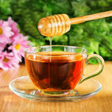 Användbart te med honung på en bakgrund Arkivfoto