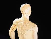 använt diagram för akupunktur 2 Arkivfoto