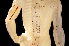 använt diagram för akupunktur 3 Arkivfoto