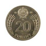 20 anverso húngaro de la moneda 1989 del forint aislado en el fondo blanco imagen de archivo