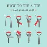 Anweisungen in, wie man eine Bindung auf dem Türkishintergrund der acht Schritte bindet Halb--Windsor Knoten Auch im corel abgeho Stockfotografie
