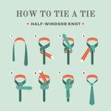 Anweisungen in, wie man eine Bindung auf dem Türkishintergrund der acht Schritte bindet Halb--Windsor Knoten Auch im corel abgeho Stockfoto