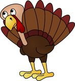 Anxious Turkey Stock Images