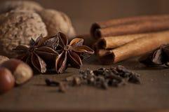 anyżowych bożych narodzeń cynamonowe kulinarne składników pikantność grać główna rolę kije Zdjęcie Stock