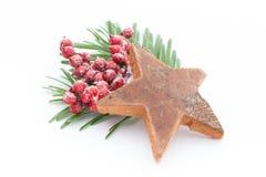 anyżowych bożych narodzeń cynamonowe kulinarne składników pikantność grać główna rolę kije Apple, anyż, gwiazdy, cynamon, sosna o Zdjęcie Royalty Free