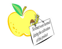 Any_insekt. Caricature a joke the image of the certificated apple with a worm Royalty Free Stock Images