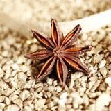 anyżowa dekoracyjna gwiazda Zdjęcia Royalty Free