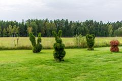 Rabbit, swan, vase and mushroom shaped bushes in a topiary garden. stock photography