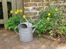 Anyone dla nawadniać kwiaty Fotografia Royalty Free