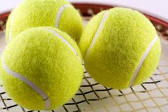 Anyone for Tennis. 3 tennis balls on a racquet Royalty Free Stock Photography