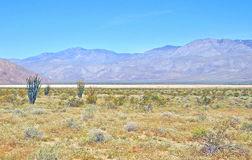 Anza-Borrego Desert: Clark Dry Lake Stock Photo