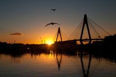 anzac γέφυρα Στοκ Εικόνα
