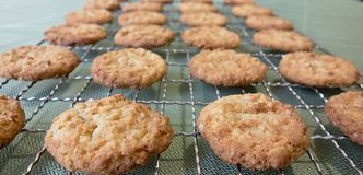 Anzac Biscuits For Anzac Day. Royalty Free Stock Image