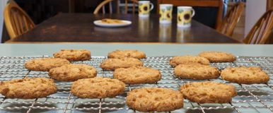 Anzac Biscuits For Morning Tea. Royalty Free Stock Photos