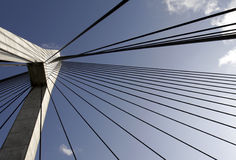 Anzac Bridge Pylon stock image