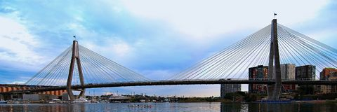 Anzac Bridge. Sydney. Anzac Bridge - with Eights rowing below at dawn on an overcast Sydney morning. Potographed from Blackwattle Bay anchorage, Sydney Harbour royalty free stock images