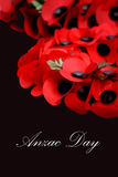 Anzac Day Royaltyfria Foton