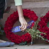 Anzac day wreath, placing rosemary Stock Photography