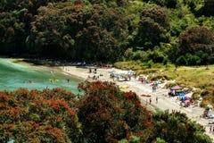Anzac zatoka Bowentown Waihi Nowa Zelandia Zdjęcia Royalty Free