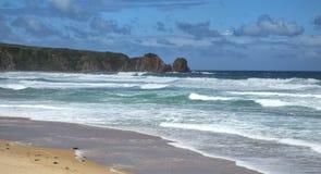 Anzacs beach in Australia Royalty Free Stock Photography