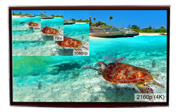 Anzeige des Fernsehen 4K Lizenzfreies Stockfoto