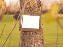 Anzeige im Wald Stockbilder