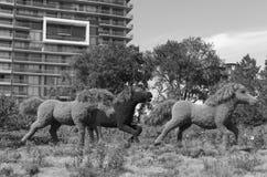 Anzeige MosaïCanada 150 von Pferden stockbild