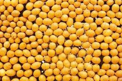Zitronenwand Lizenzfreies Stockfoto