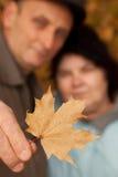 Anziana di permesso e di abbraccio dell'acero della stretta dell'uomo anziano Fotografie Stock