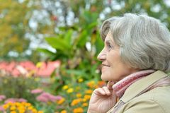 Anziana sorridente Fotografie Stock Libere da Diritti