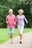 Anziani attivi Immagine Stock