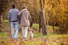Anziani attivi Fotografie Stock