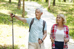 Anziani attivi Fotografia Stock