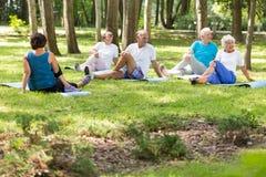 Anziani attivi che fanno yoga Fotografia Stock Libera da Diritti