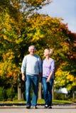 Anziani in autunno o in caduta che camminano congiuntamente Fotografia Stock
