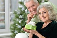 Anziani che celebrano il Natale Fotografie Stock Libere da Diritti